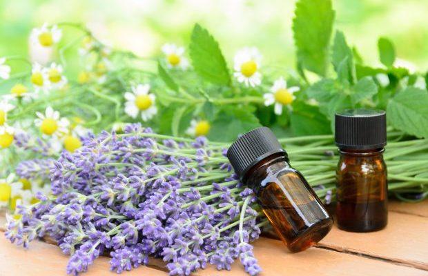 天然アロマで質の良い睡眠を。リラックスできる香りやアイテムはこれ!