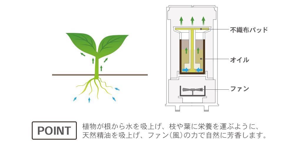 植物が根から水を吸い上げ枝や葉に栄養を運ぶように、天然精油を吸い上げ、ファン(風)の力で自然に芳香します